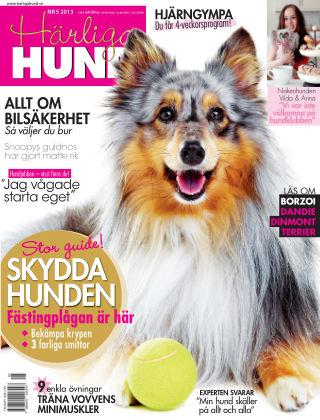 Härliga Hund 2013-04-23