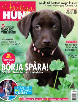 Härliga Hund 2013-07-30