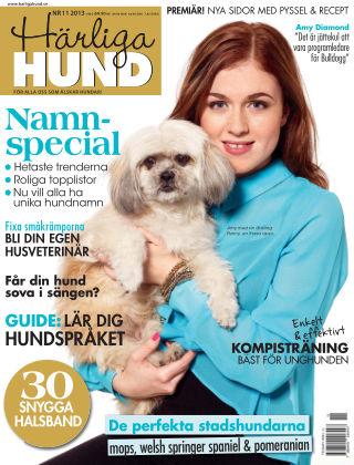 Härliga Hund 2013-10-30