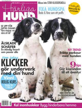 Härliga Hund 2013-09-26