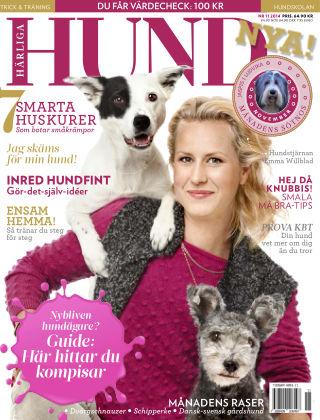 Härliga Hund 2014-10-27