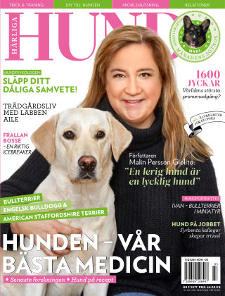 Härliga Hund 2017-02-28