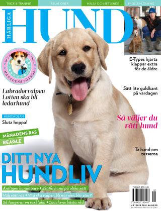 Härliga Hund 2017-12-28