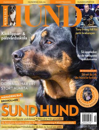 Härliga Hund 2018-08-28