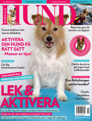 Härliga Hund 2018-09-25