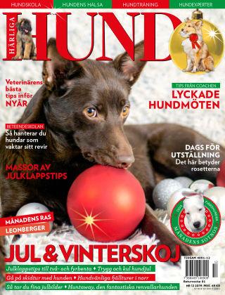 Härliga Hund 2019-11-27