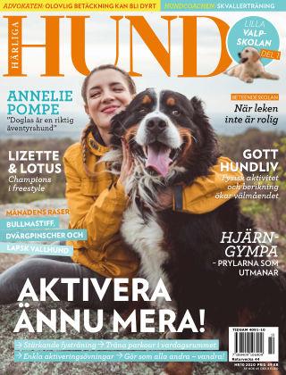 Härliga Hund 2020-09-22