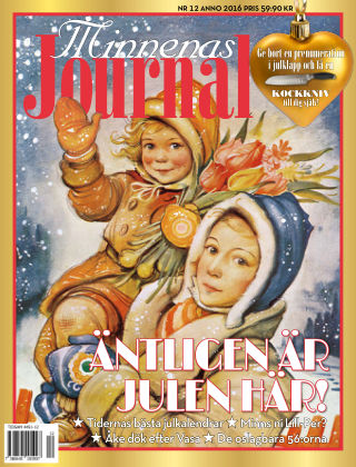 Minnenas Journal 2016-12-02