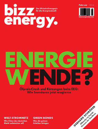 bizz energy Februar 2016