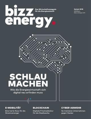 bizz energy Herbst 2018