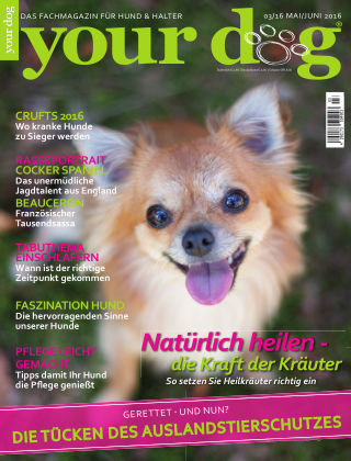 Your Dog 03/2016