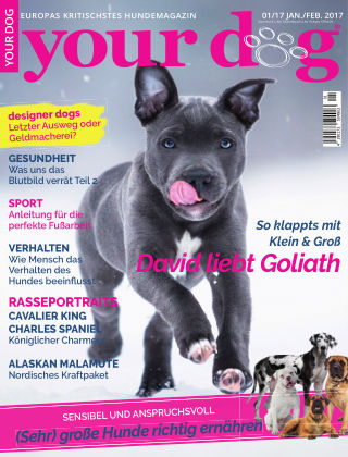 Your Dog 01/2017
