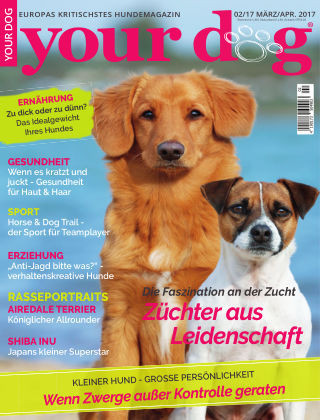 Your Dog 02/2017