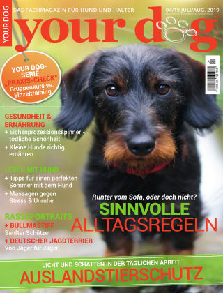 Your Dog 4/2019