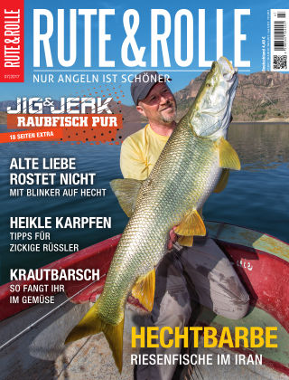 RUTE&ROLLE 07/2017