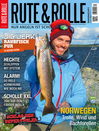 RUTE&ROLLE 01/2018