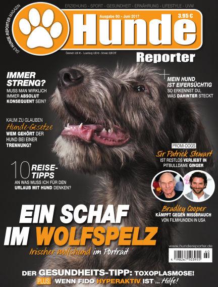 Hunde-Reporter