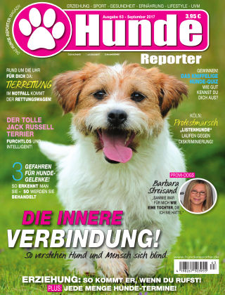 Hunde-Reporter 63