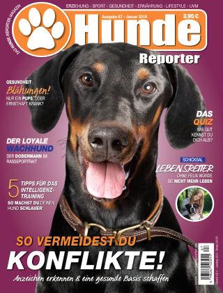 Hunde-Reporter 67