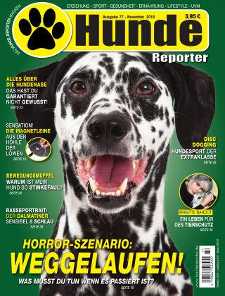 Hunde-Reporter 77