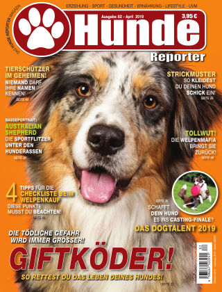 Hunde-Reporter 82