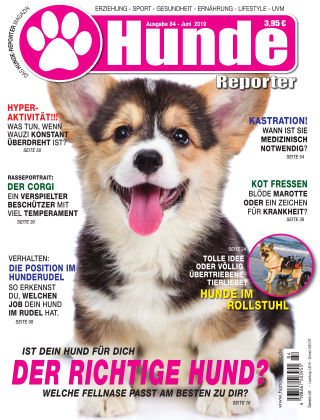 Hunde-Reporter 84