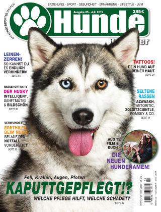 Hunde-Reporter 85