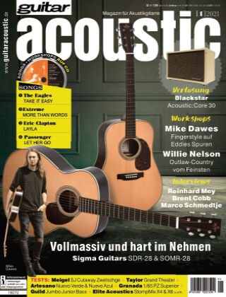 Guitar acoustic 2021-01