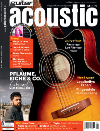 Guitar acoustic 2021-02