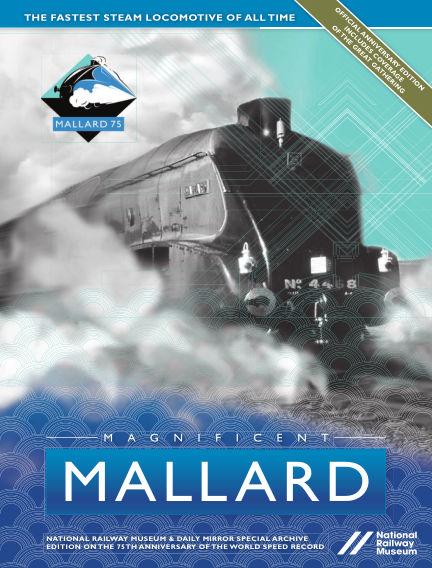 Magnificant Mallard October 28, 2017 00:00