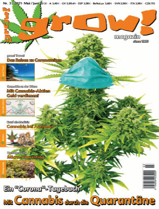 grow! Magazin 03-2021