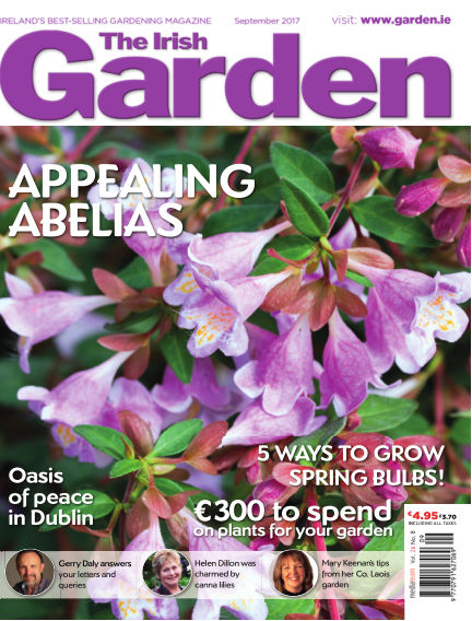 The Irish Garden August 25, 2017 00:00