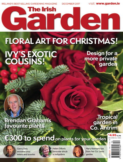 The Irish Garden November 18, 2017 00:00