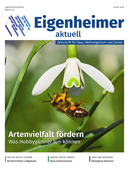 Eigenheimer Magazin January 01, 2019 00:00