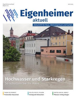 Eigenheimer aktuell 06.2019