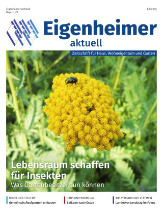 Eigenheimer aktuell 07.2019