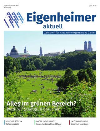 Eigenheimer aktuell 06.2020
