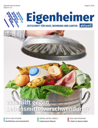 Eigenheimer aktuell 08.2020