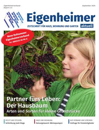 Eigenheimer Magazin 09.2020