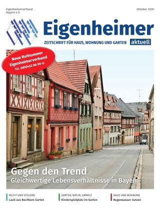Eigenheimer Magazin 10.2020