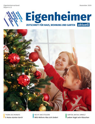 Eigenheimer Magazin 12.2020