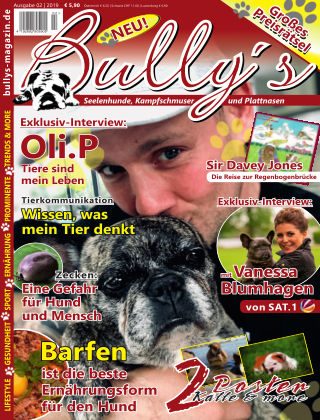 Bully's - Das Magazin 2-19