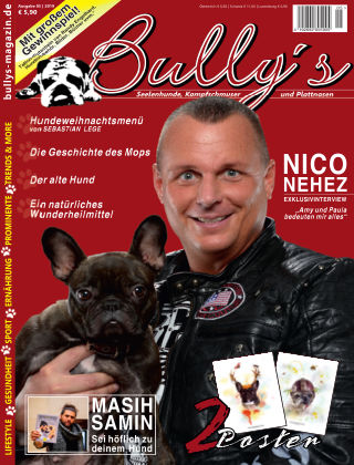 Bully's - Das Magazin 5-19