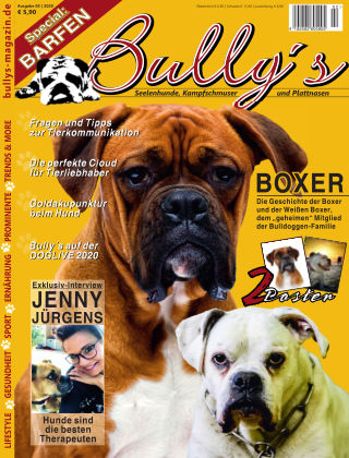 Bully's - Das Magazin 2-20