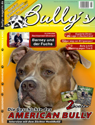Bully's - Das Magazin 06-20