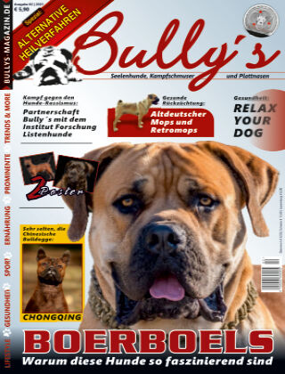 Bully's - Das Magazin 2/21