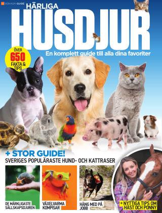 Härliga husdjur 2019-12-20