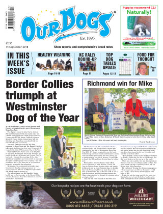 Our Dogs 14th September 2018