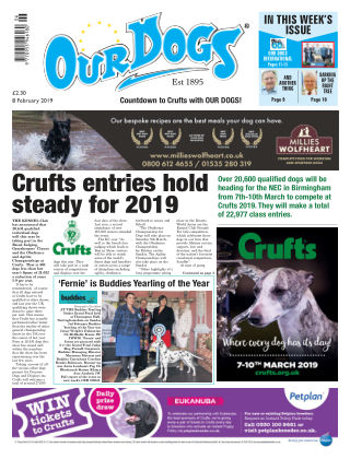 Our Dogs February 2019