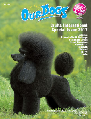 Our Dogs International Special Int Spec 2017